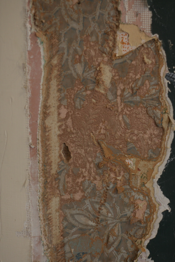 stripping wallpaper, 100 year old wallpaper, home renovations