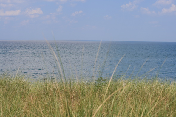 Lake Ontario, tall wild grasses, bike trail, Hamilton