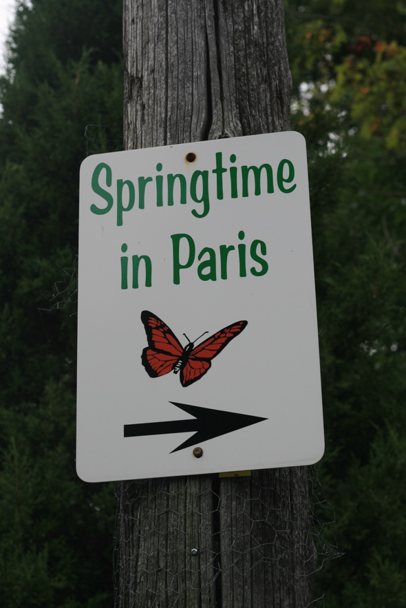 Spring TIme in Paris, Ontario
