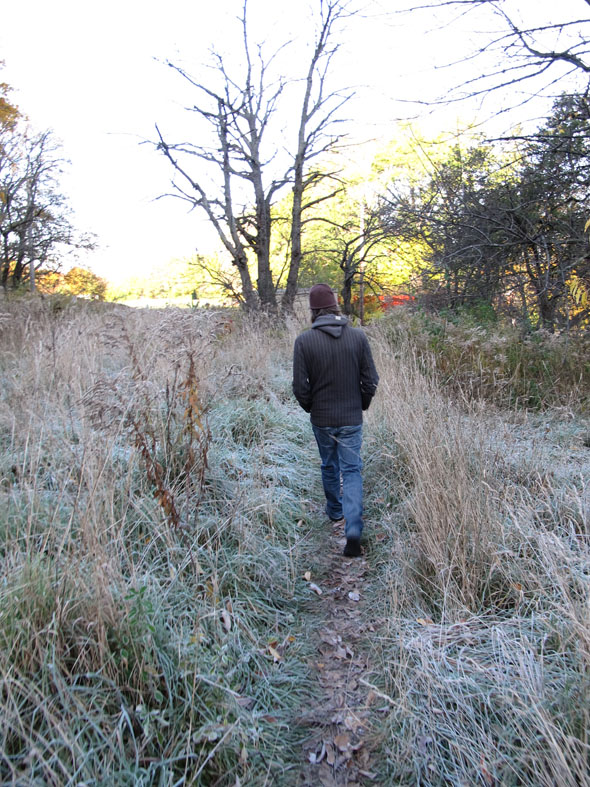 Bruce Trail, Hamilton, November, frost, Saturday morning hike, walk