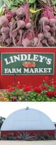 Lindley's Farm Market