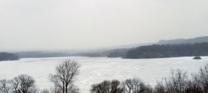 Cootes Paradise view from T.B. McQuestion bridge