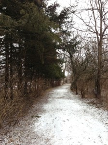 captain cootes trail